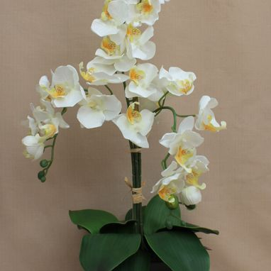 White Artificial Orchid in Pot